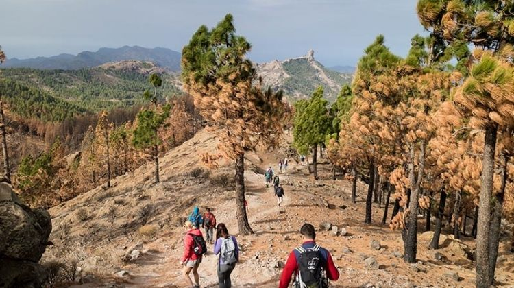 Canary Islands Walking - Gran Canaria