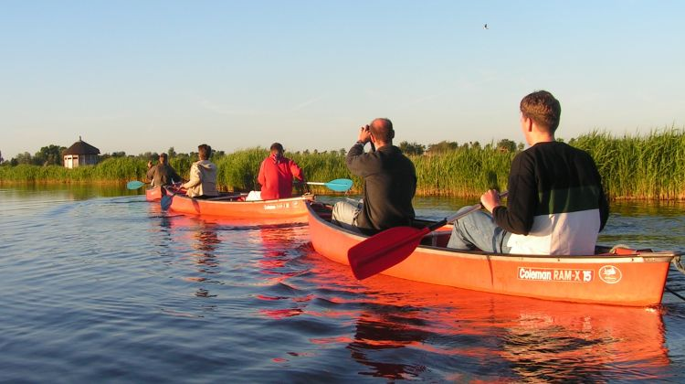 Canoe Tour in the Wetlands around Amsterdam