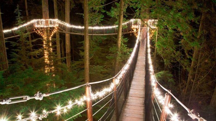 Мост подвесной