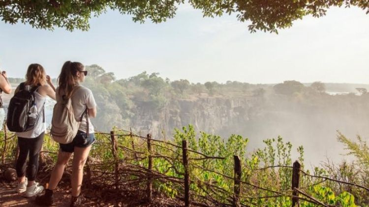 Cape Town to the Serengeti