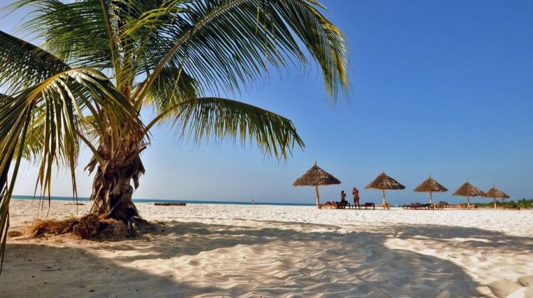 Cape Town to Zanzibar Accommodated 35 Days