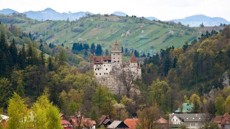 Carpathian Walking & Bears