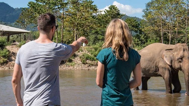 Chiang Mai & Elephant Experience