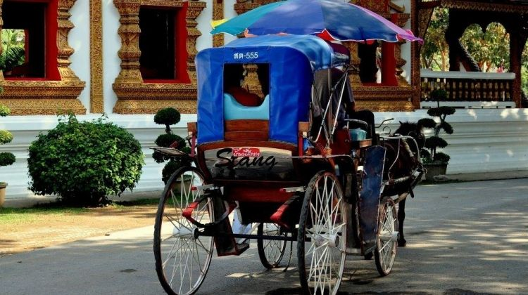 Chiang Mai On A Plate, City Break