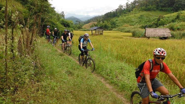 Chiang Mai Trail Experience