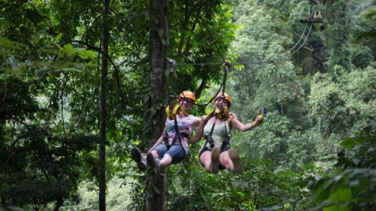 Chiang Mai Zipline Canopy Tour