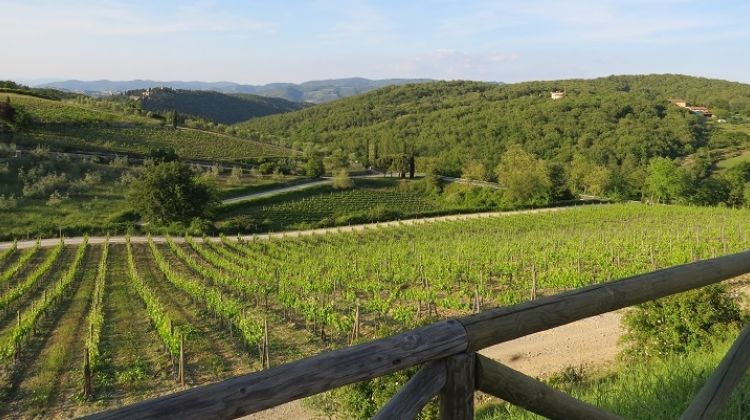 Chianti Authentic Experience with Wine Tasting