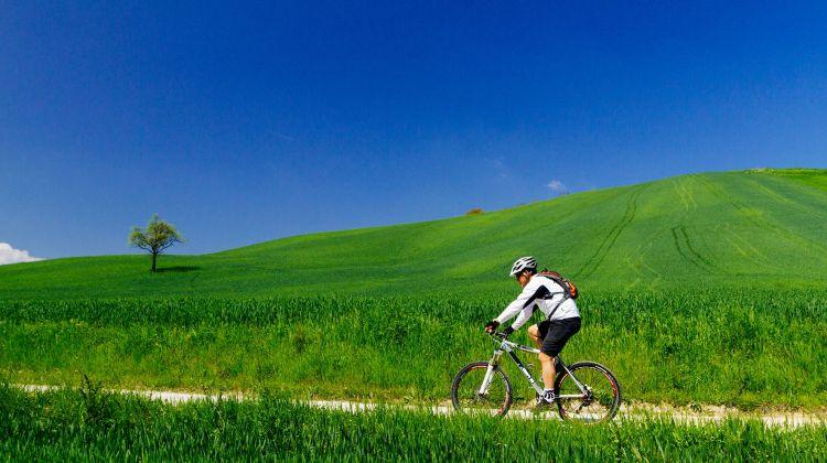 Chianti E Bike Tour from Siena