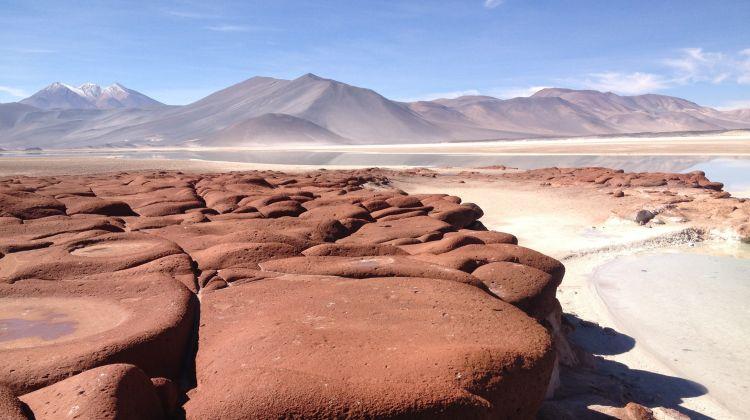 Chile Tour: Desert, Moais & Vineyards