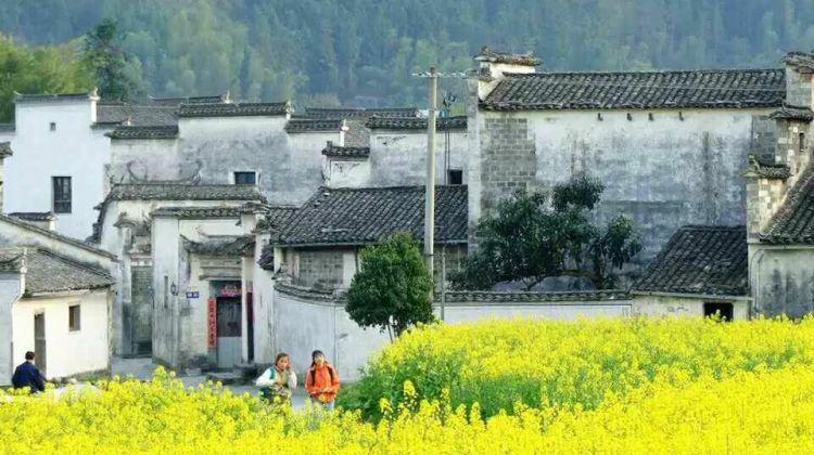 China Tour: Amazing Huangshan (Yellow Mountain)