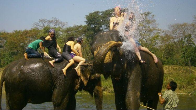 Chitwan Jungle Safari Tour 3 Days / 2 Nights