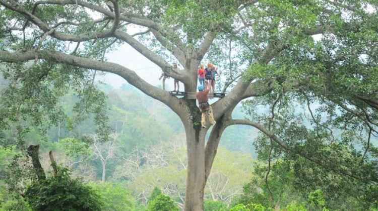 Chonburi Zipline Canopy Tour