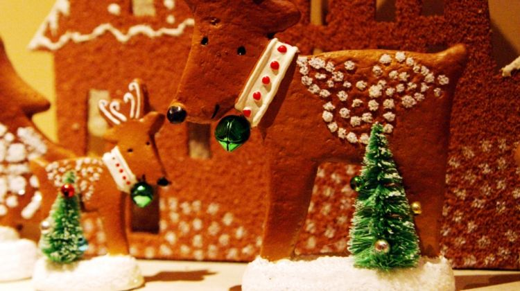 Christmas House Visit