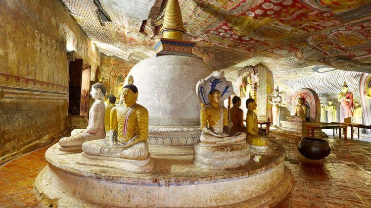 Circle Sri Lanka