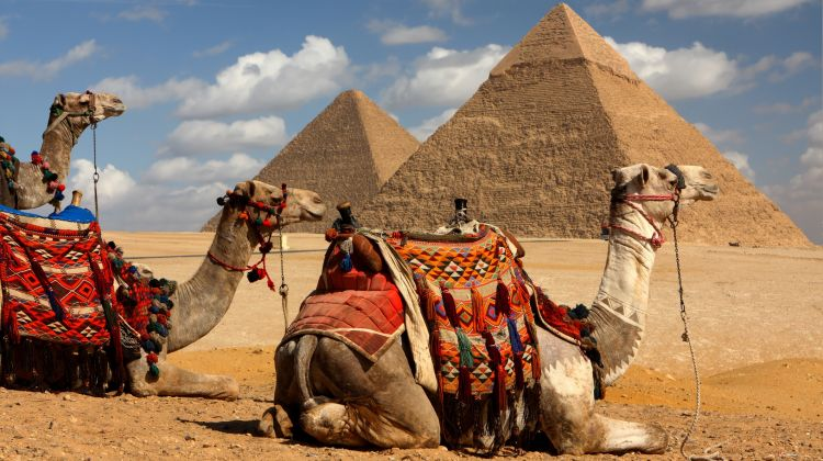 Classic Egypt Tour & Nile Cruise 8 Days In 5* or 4* Stars