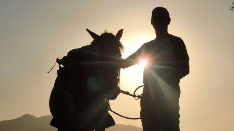 Classic Horseback Ride