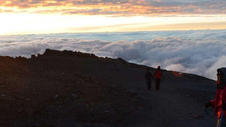 Climb Kilimanjaro - Machame Route