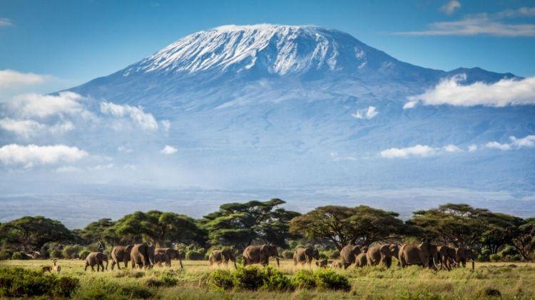 Climbing Kilimanjaro 7-Days Machame Route