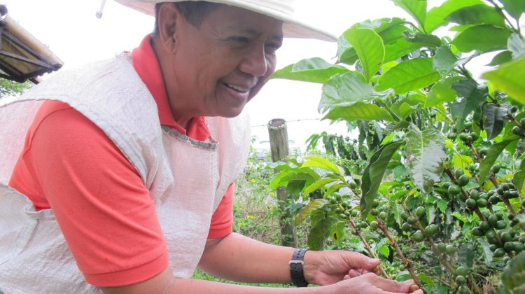 Coffee and Mountains: Eje Cafetero and Los Nevados