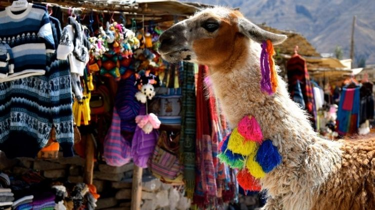 Colca Canyon Day Trip
