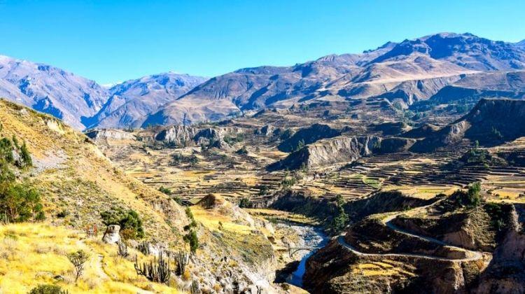 Colca Canyon Day Trip