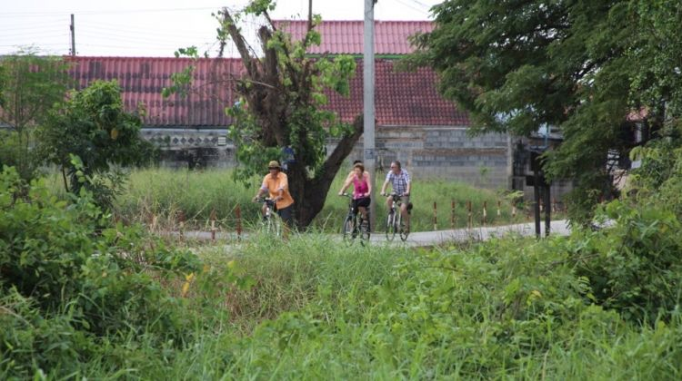 Colors of Ayutthaya Bicycle Tour