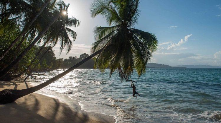 Costa Rica BLT