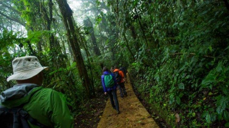 Costa Rica: Monteverde and La Fortuna