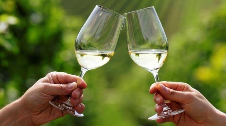 Cradle of Wine