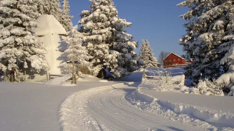 Cross-country Skiing: Kamben
