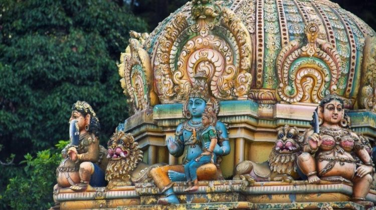 Cultural Highlights Of Sri Lanka 6 Days, Private Tour