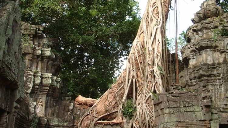 Cycle Indochina & Angkor - Premium