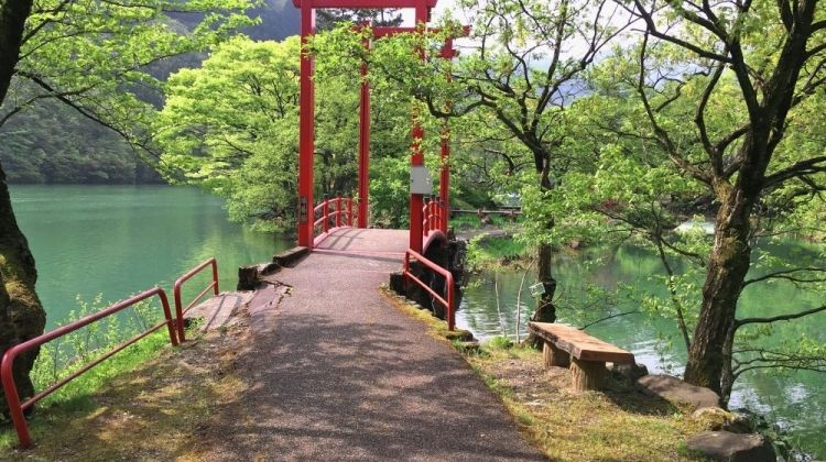 Cycle Japan