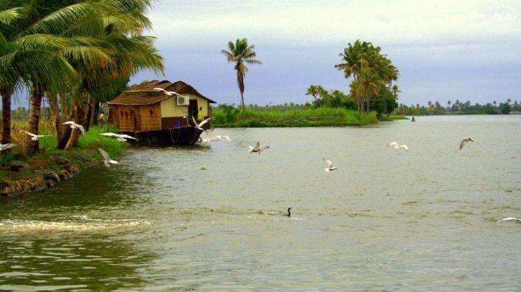 Kerala Tour Operators List