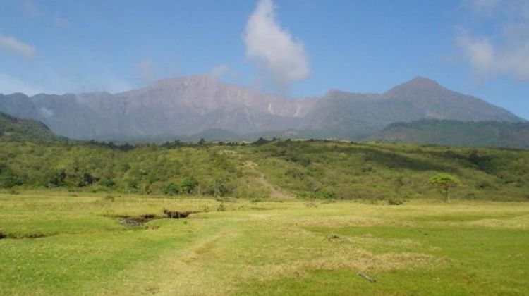 Day Tour - Arusha National Park