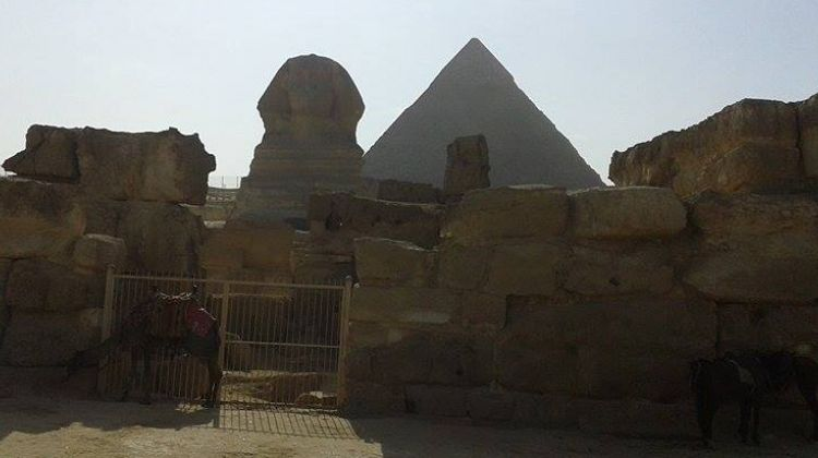 Day tour to Giza and Islamic Cairo