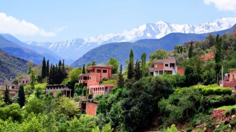 Day Trips to The Atlas Mountains and Berber Villages