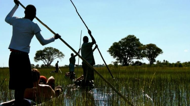 Delta & Falls Eastbound: Baobab Trees & River Views