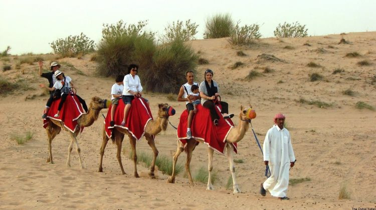 Desert Safari with BBQ Dinner and Live Entertainment