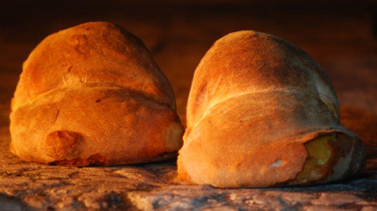 Discover altamura: bread tour tasting