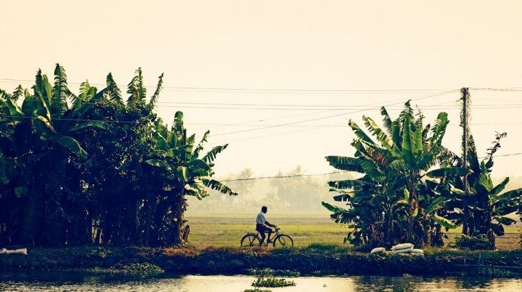 Discover Kerala by Bicycle