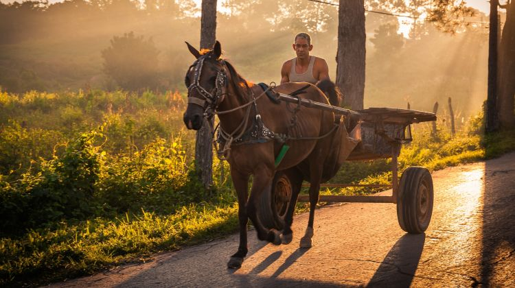 Discover the West of Cuba