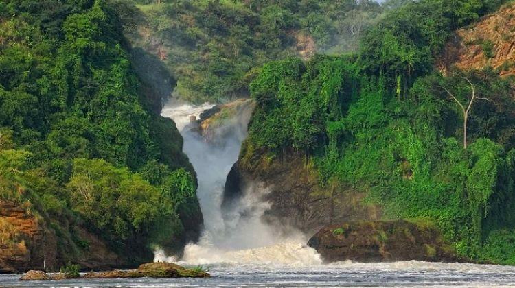 Discover Uganda Tour