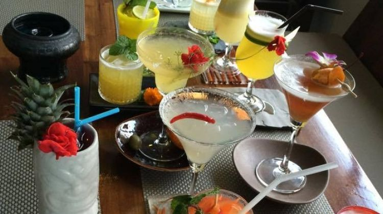Drinks Tasting Tour