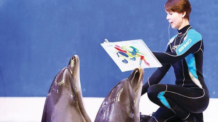 Dubai Combo Pkg: Dolphinarium & Dinner cruise