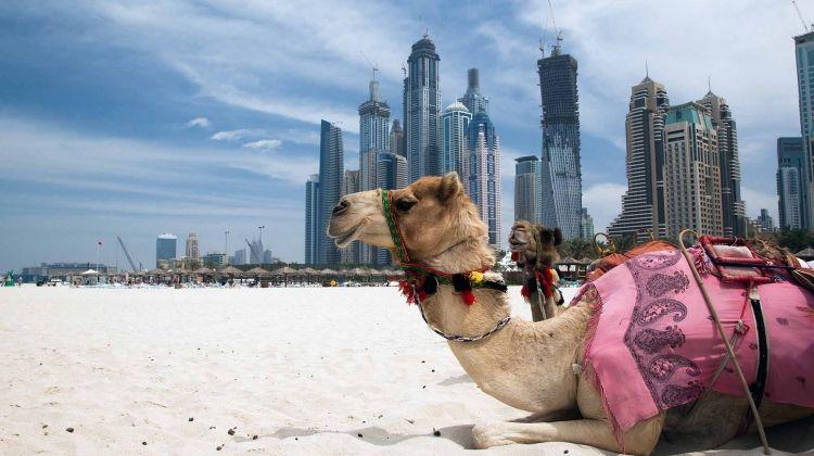 Dubai Experience - Independent