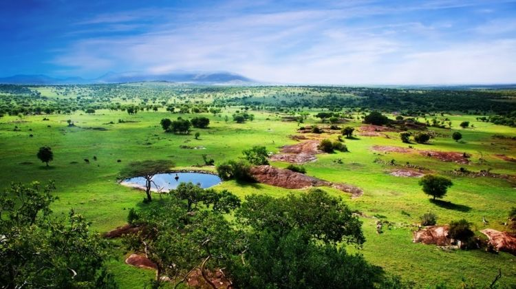 East African Explorer, Keekorok And Serena Lodges (multi Country)