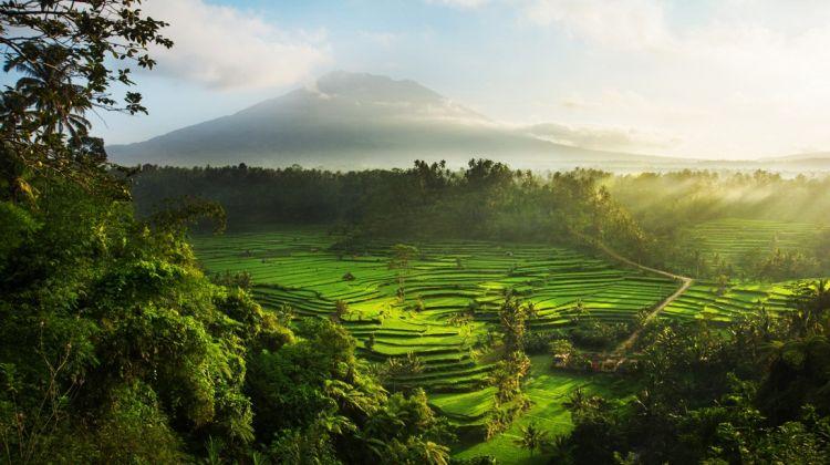 East Bali Delights