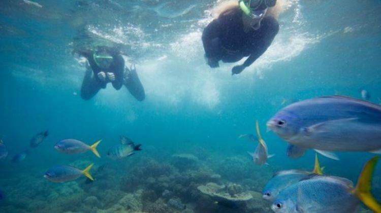East Coast Encompassed: Sydney to Cairns