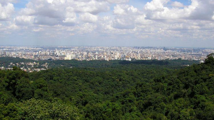 Eco Tour São Paulo